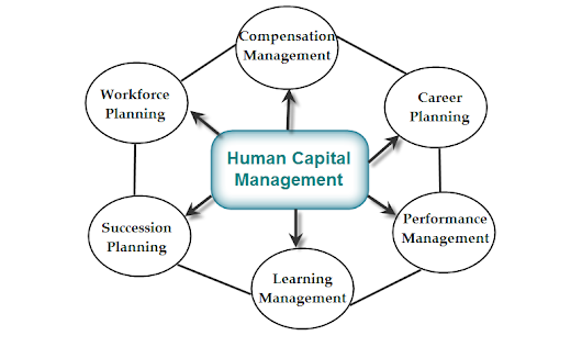 Why human capital management can be driven by the appropriate digital strategy