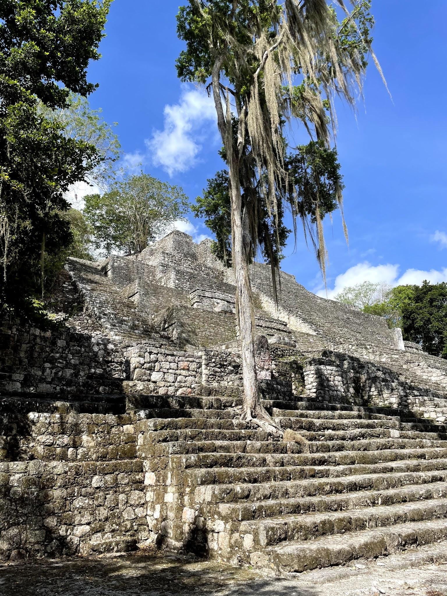 Calakmul Cité Maya