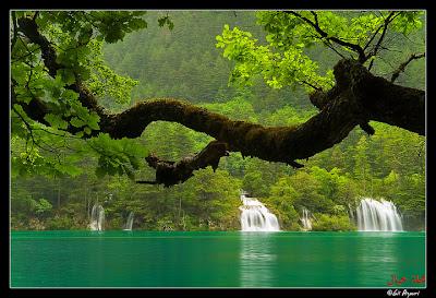 الصين بجمال طبيعتها الساحر 57406359.xC0ue3Ql.DS