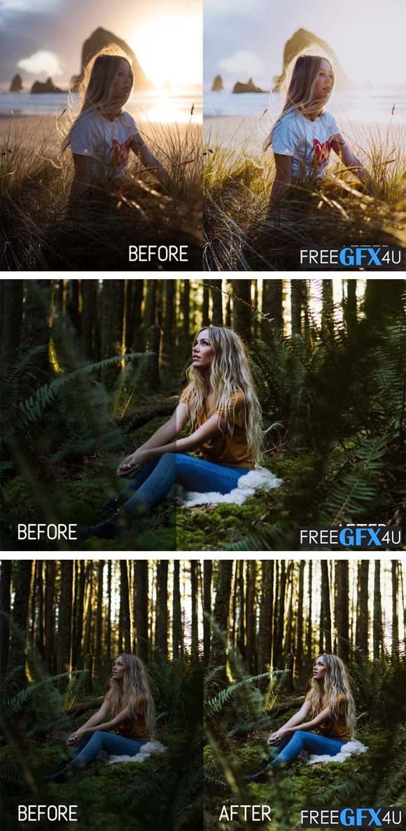 Perfect Portrait Lightroom Presets