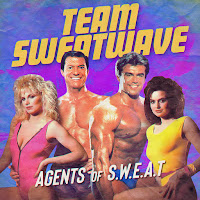 Agents Of S​.​W​.​E​.​A​.​T van Team Sweatwave