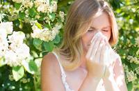Алергиите