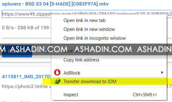 Download File Secara Manual dengan IDM