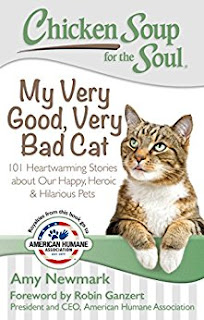 Chicken Soup for the Soul: My Very Good, Very Bad Cat book cover