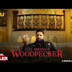 Woodpecker webseries  & More