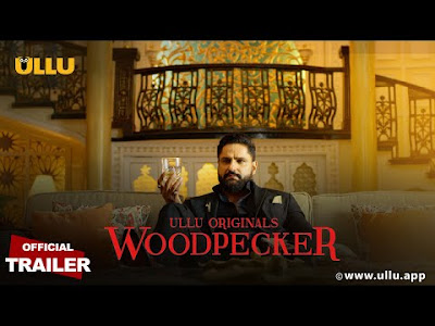 Woodpecker web series Wiki, Cast Real Name