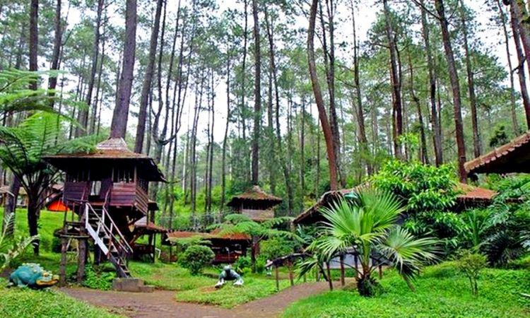 Rumah Pohon Jatiasih, Wisata Alam & Outbond Kekinian di Bekasi