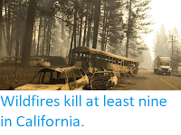 https://sciencythoughts.blogspot.com/2018/11/wildfires-kill-at-least-nine-in.html