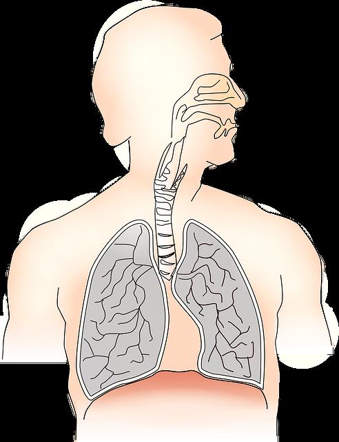 التهاب الشعب الهوائية الأعراض والعلاجات