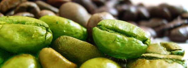 Wow, inilah manfaat kopi hijau yang berkontribusi terhadap kesehatan