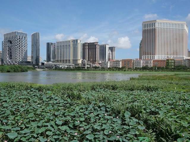 Baía de Nossa Senhora da Esperança Wetland Ecological Viewing Zone and casinos in the distance in 2019