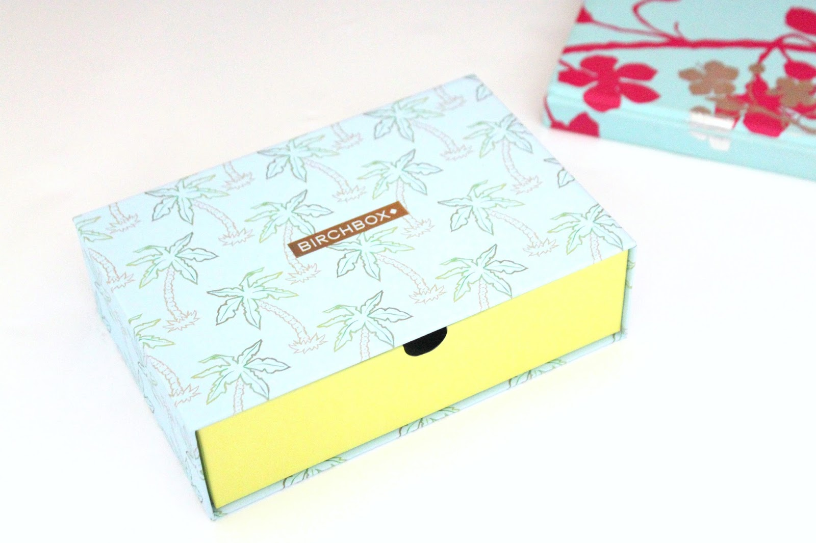 June Paradise Found Birchbox 2016 Review