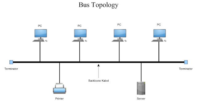2)      Topologi bus