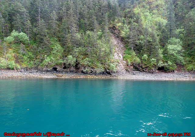 Alaska Seward Resurrection Bay