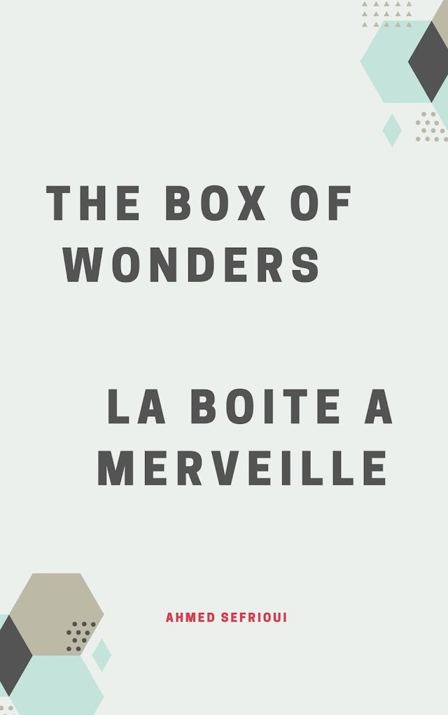 Summary of The box of wonders chapter by chapter ( La boite à merveilles)