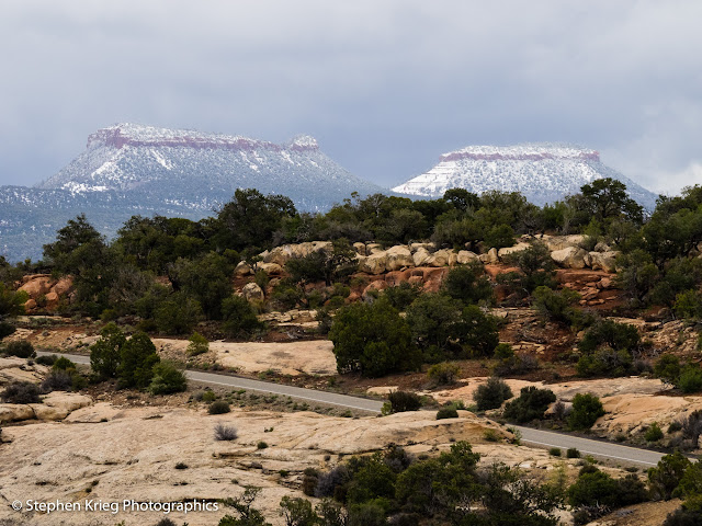 Bears Ears Buttes from Natural Bridges National Monument, San Juan County, Utah.