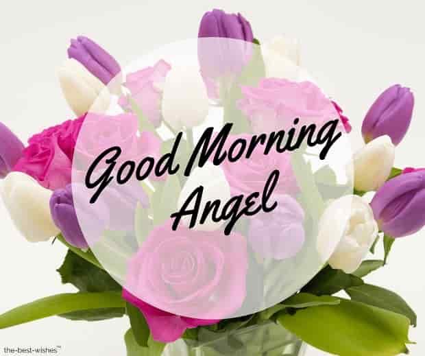 good morning angel photos