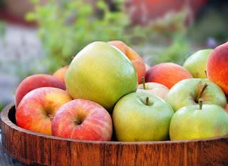 7 Makanan Sehat Untuk Penderita Ambeien, wasir, ambeien adalah, wasir adalah,cara mengobati ambeien, cara mengobati wasir