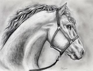 قصة الحصان الوفي - قصة حقيقية