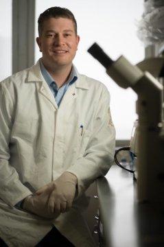 اكتِشافُ نوعٍ جديدٍ من الخلايا الجذعيّة