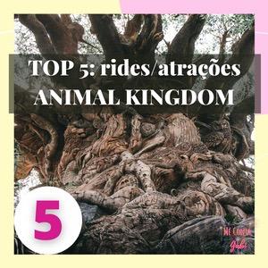TOP 5: rides/atrações favoritas do ANIMAL KINGDOM