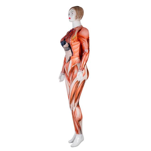 Aula de Anatomia Humana