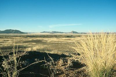 Namibia, landscape, Namib
