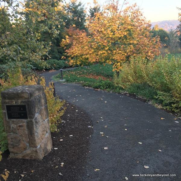 garden path at The Allison Inn & Spa in Newberg, Oregon