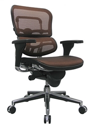 Ergohuman Mid Back Chair