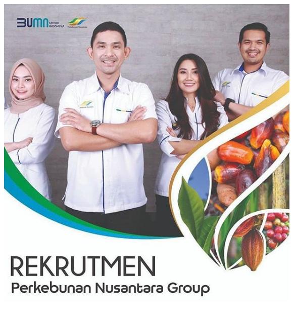 Lowongan Kerja BUMN Perkebunan Nusantara Group Juli 2020