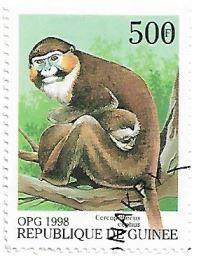 Selo Macacos