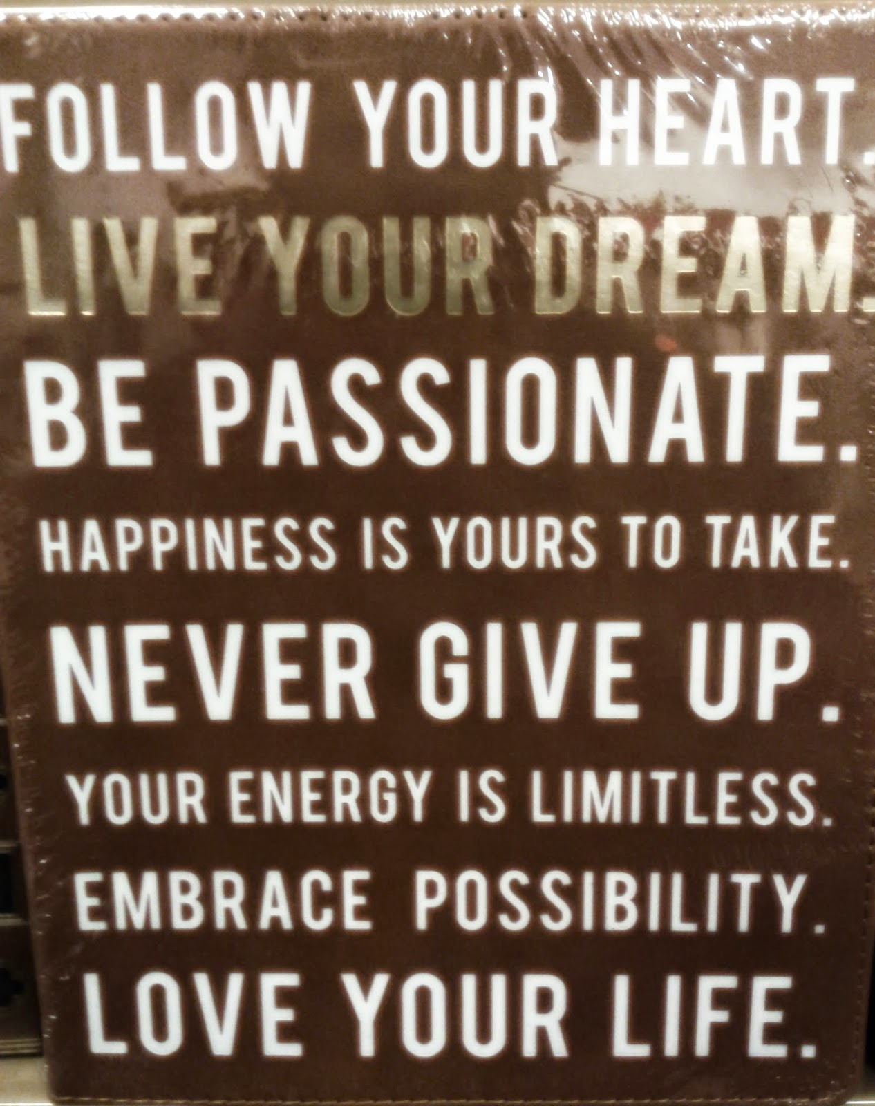 Follow your heart Live your dream Be passionate Happiness if yours to take Never give up Your energy is limitless Embrace possibility Love your life