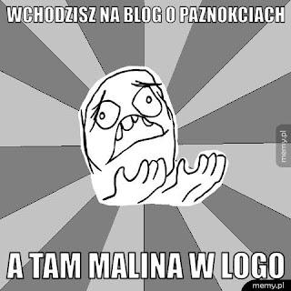 mem - wchodzisz na bloga o paznokciach, a tam malina w logo