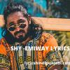 EMIWAY - SHY Lyrics in English and Hindi - lyricshindipunjabi