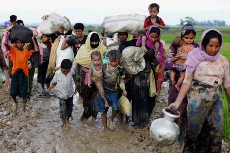 إبادة مسلمي الروهينغا في ميانمار .. عار على جبين البشر والحجر