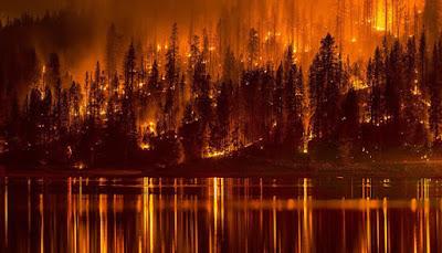 Дым от пожаров в Сибири достиг Канады и Аляски