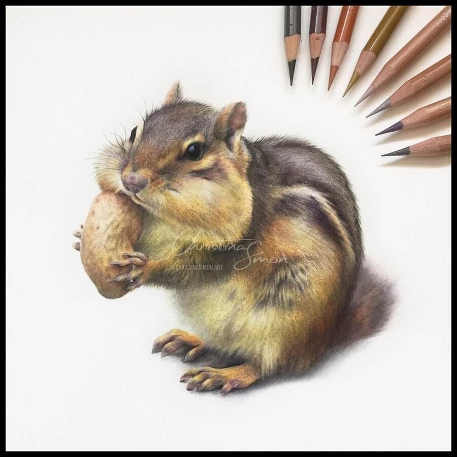 03-Hungry-Chipmunk-Cristina-Simon-www-designstack-co