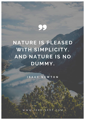 Nature is pleased with simplicity. And nature is no dummy. __ Isaac Newton