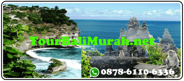 ONE DAY TOUR BALI MURAH UBUD ULUWATU