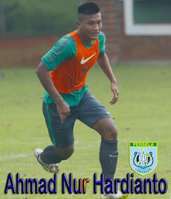 gambar Profil biodata Ahmad Nur Hardianto