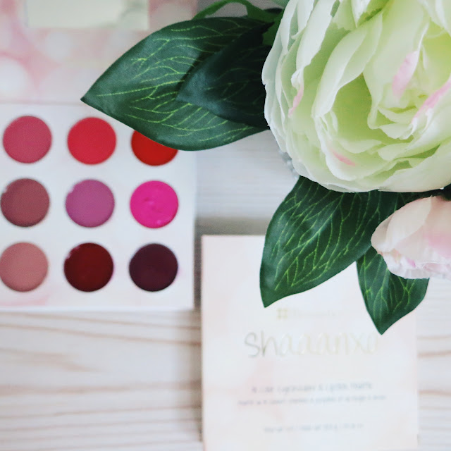 BH Cosmetics x Shaaanxo Palette Review and Swatches