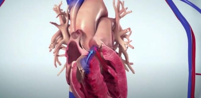 Лекар и пациент от Кюстендил станаха герои в национална кампания за Сърдечната недостатъчност