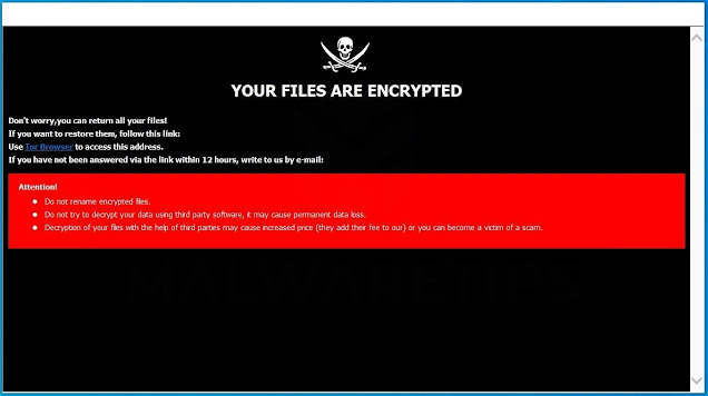 [Backmydata@protonmail.com].bmd (Ransomware)