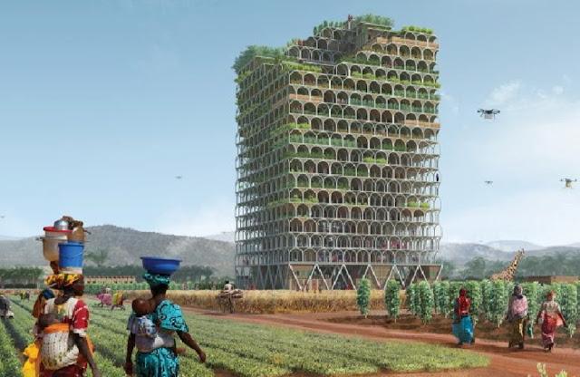 Mashambas-Skyscraper-project