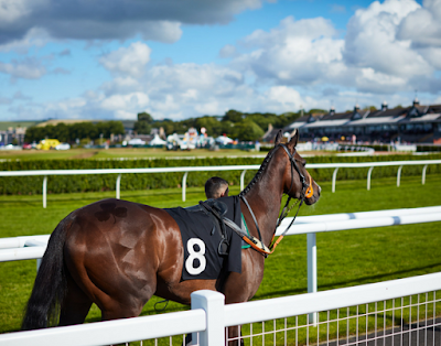 Musselburgh racing tips