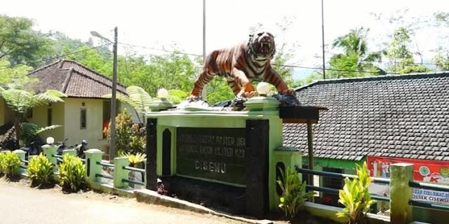 Harimau lucu digantikan Harimau sangar