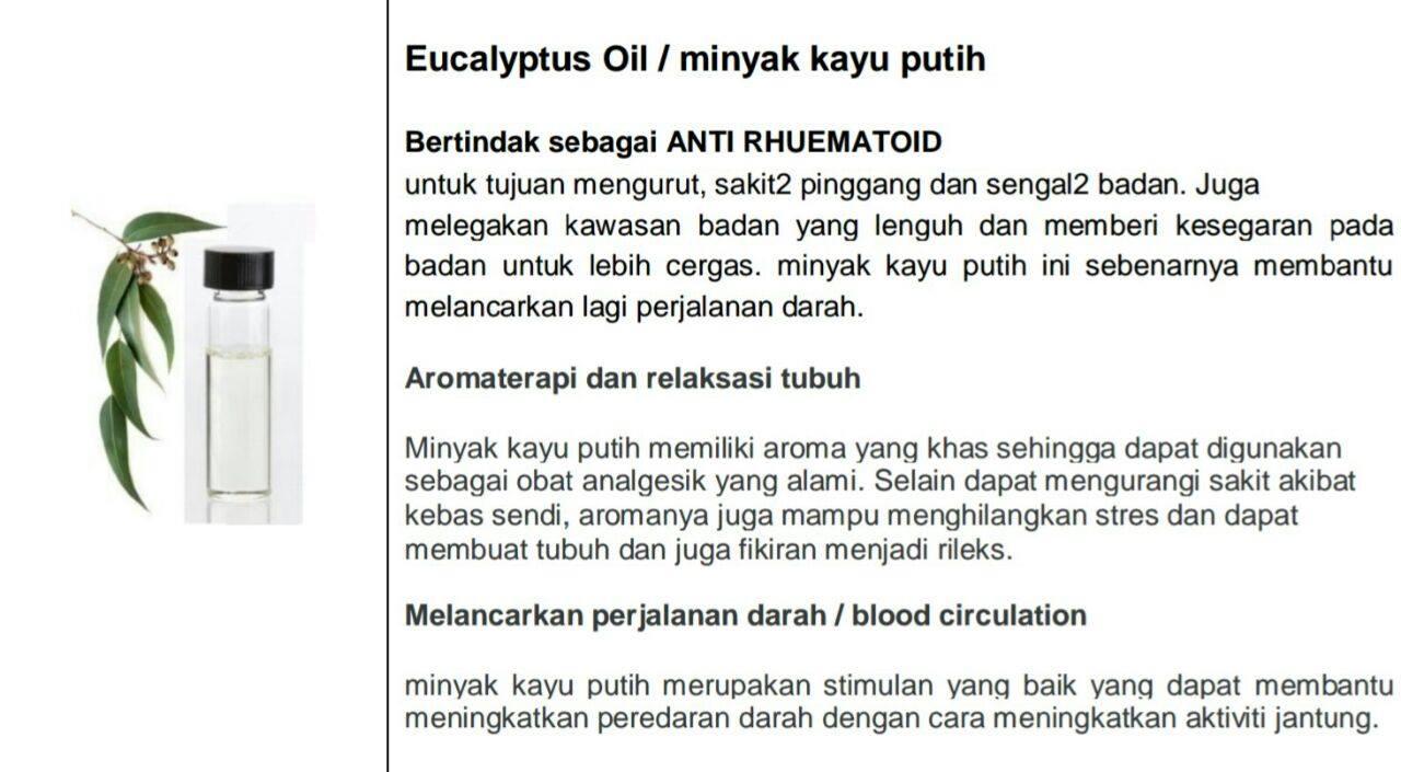 Kelebihan Minyak Kayu Putih / Eucalyptus Oil