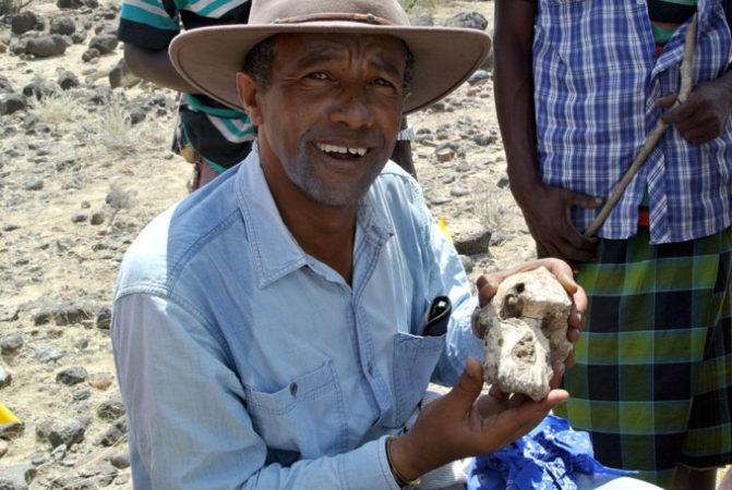 El paleoantropólogo Johannes Haile-Selassie sostiene el hallazgo de un cráneo de Australopithecus anamensis hallado en Etiopía. Foto: Cleveland Museum of Natural History.