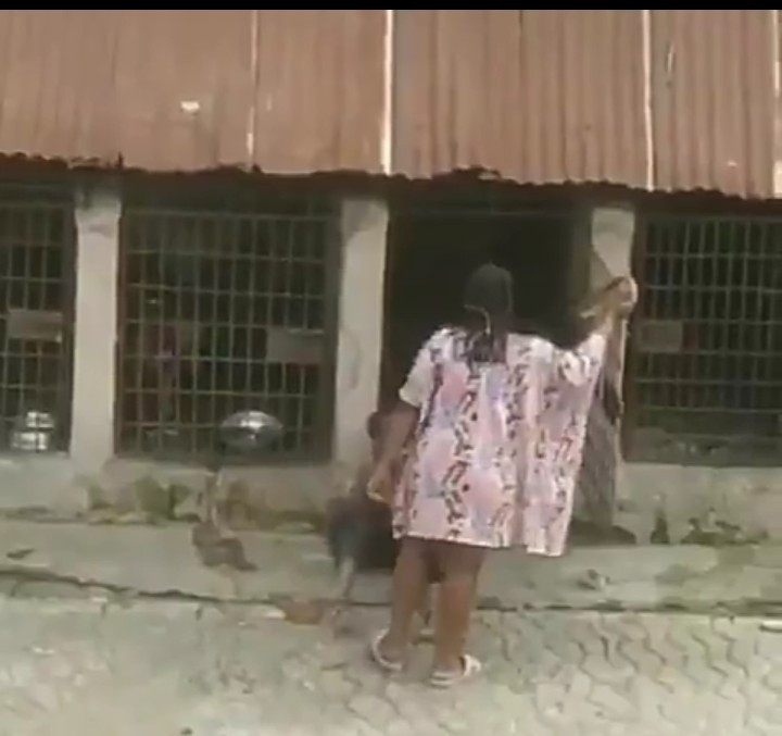 Nigeria Woman Flogged A Child With Belt, Lock Him A Cage With Fierce Dog (Video)