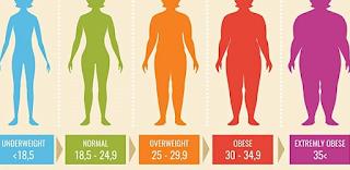Apa Itu Body Mass Index
